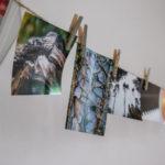 Deko Bildergalerie beim anmutig & frei Frauencamp