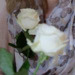 zwei weisse Rosen